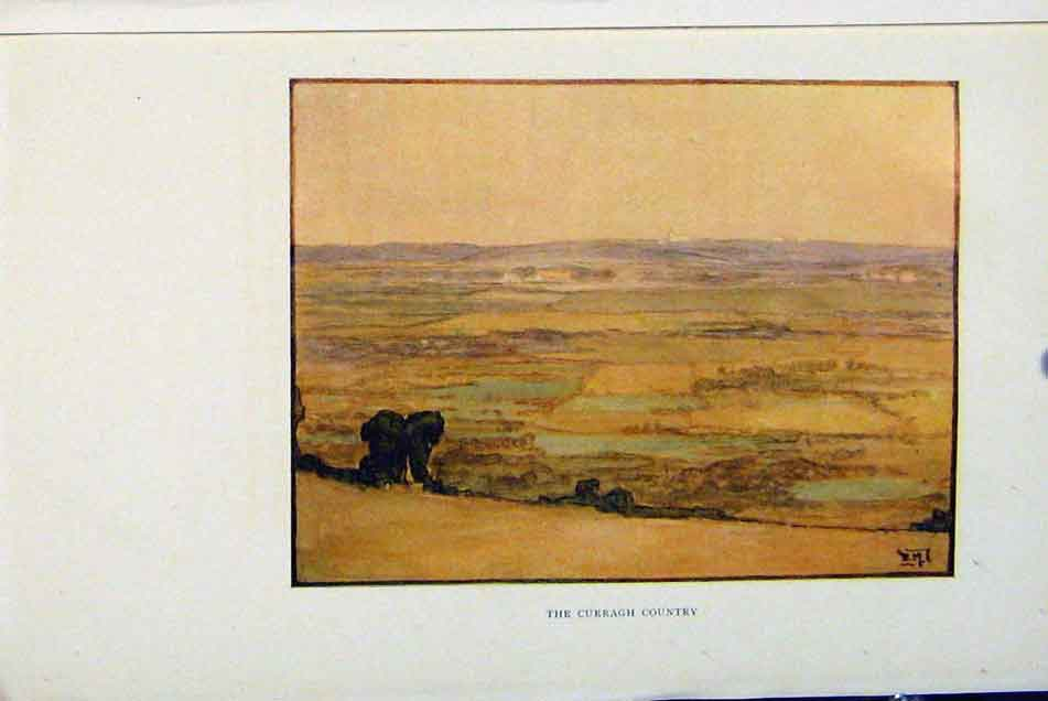 Print Isle Man By Donald Maxwell Curragh Country C1909 238381 Old Original