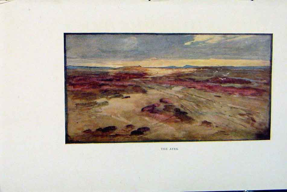 Print Isle Man By Donald Maxwell The Ayre C1909 248381 Old Original