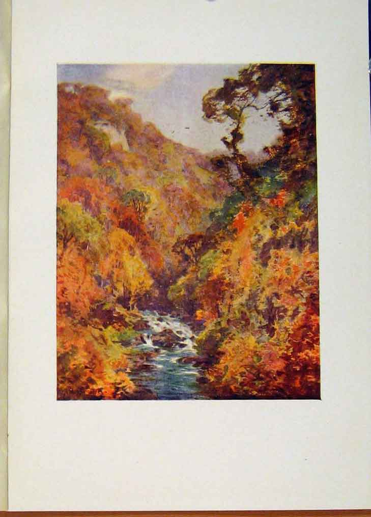 Print Dargle Wicklow By A Heaton Cooper Ireland 358431 Old Original