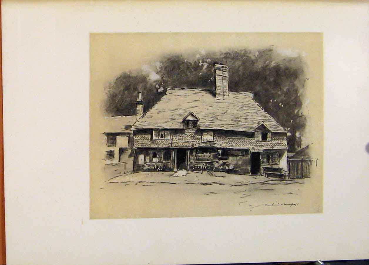 Print A Cottage In Surrey World Pictures C1902 528451 Old Original