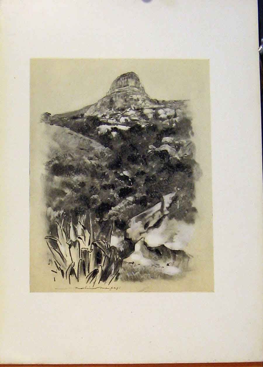 Print Hill Country Near Bloemfontein World Pictures 818451 Old Original