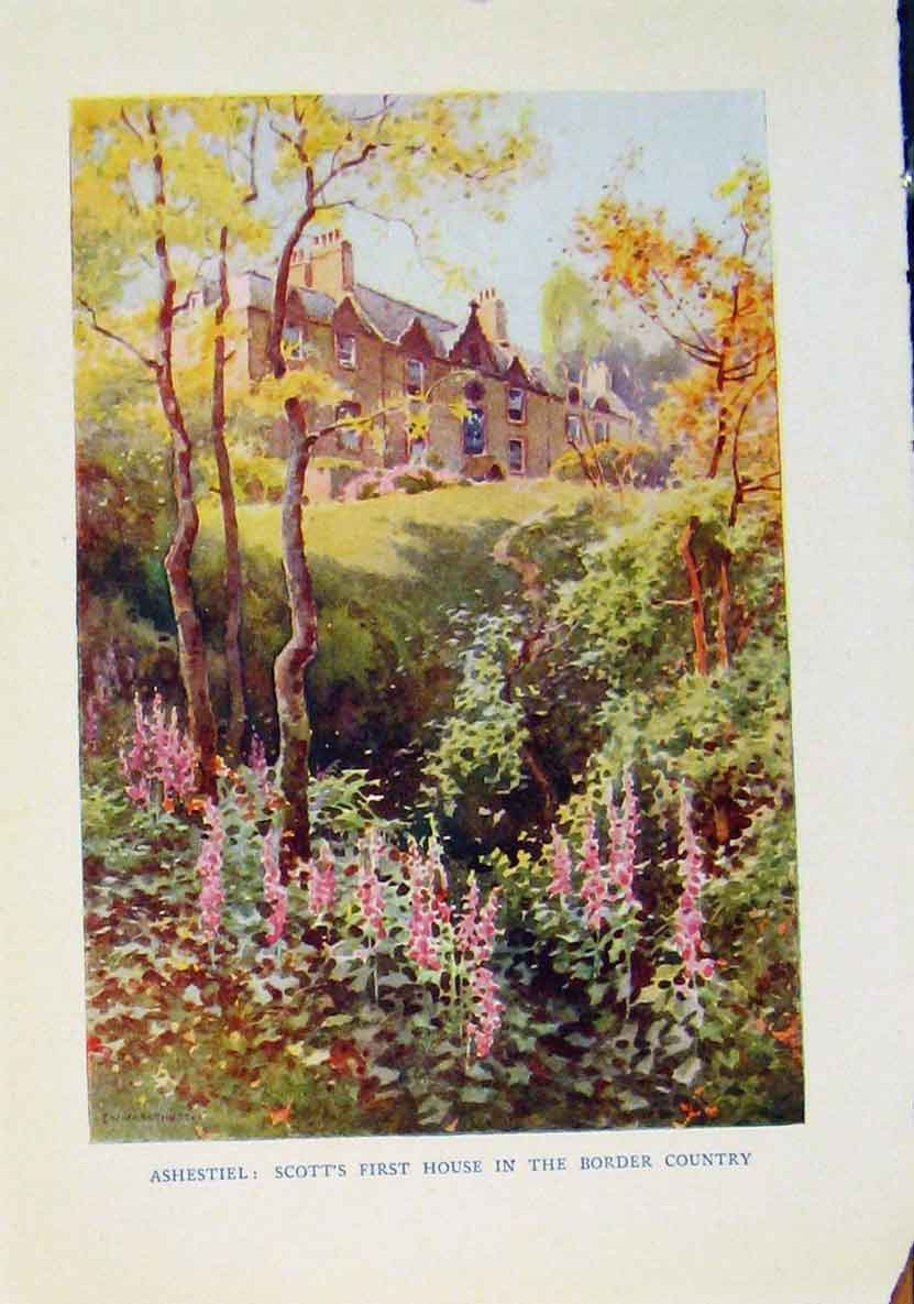 Print Ashestiel Scotts First House Country Beautiful Scotland 688461 Old Original