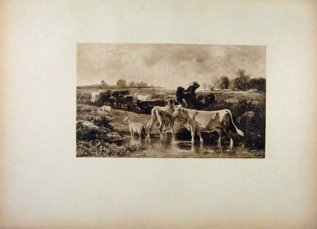 Print French Art Scattered Herd By Marcke 178561 Old Original