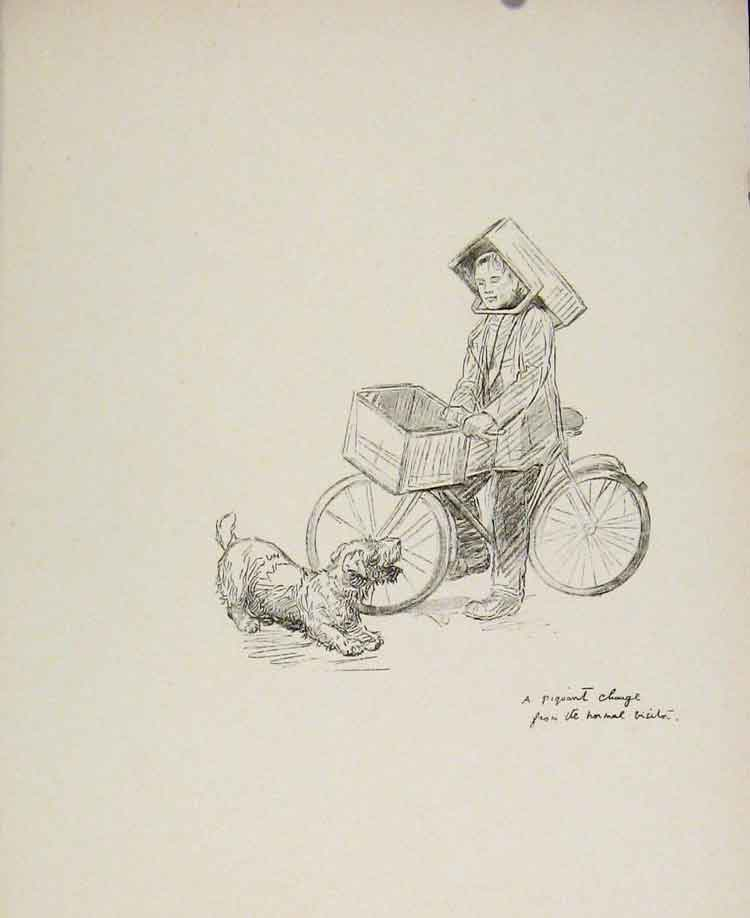 Print Drawing Sketch Dog Man On Bicycle Rogue'S Gallery 258591 Old Original