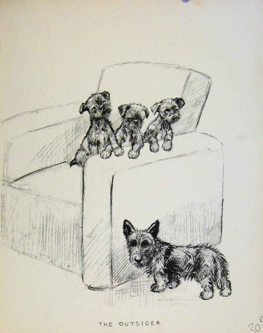 Print Just Pups By K F Barker Puppy Dog Drawing 30R8631 Old Original