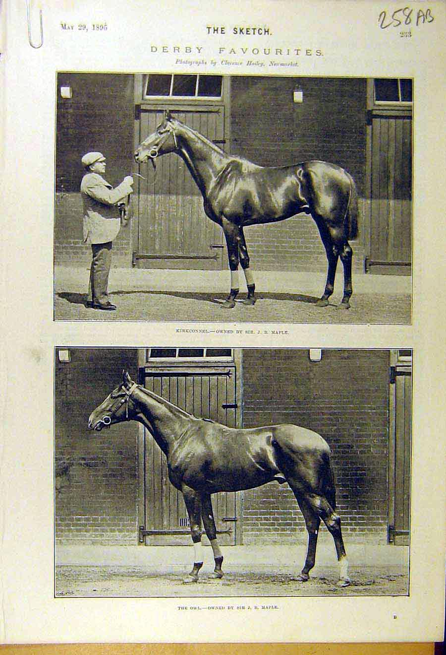 Print 1895 Derby Favourites Race-Horse Kirkconnel Owl Solaro 58A8661 Old Original