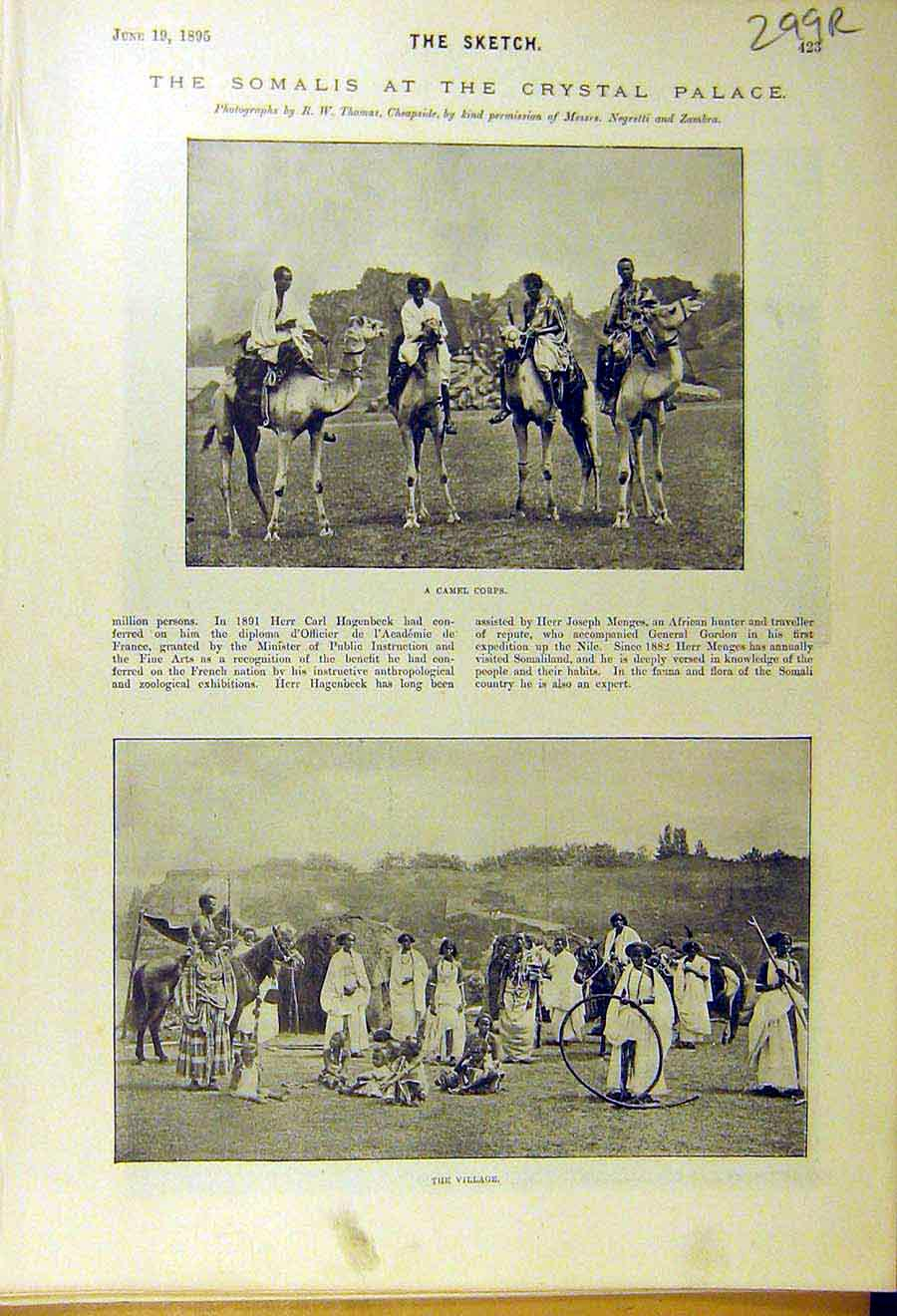 Print 1895 Somalis Crystal Palace Camel Corps Sowing-Reaping 99R8661 Old Original