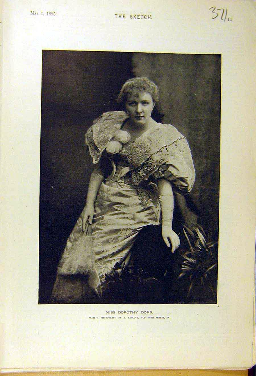 Print 1895 Portrait Dorothy-Dorr Lady Woman Photo 718661 Old Original