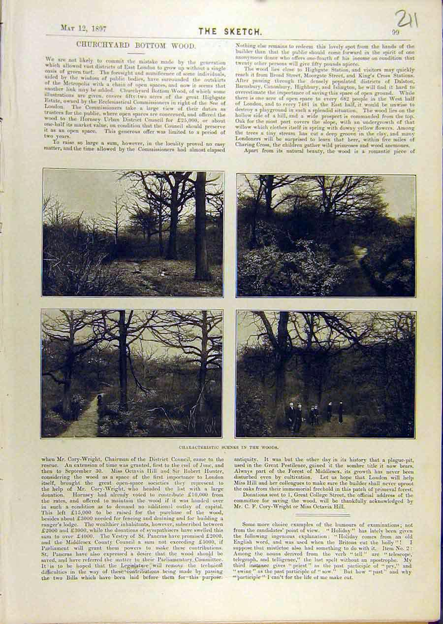 Print 1897 Scene Woods Churchyard Bottom-Wood 118671 Old Original