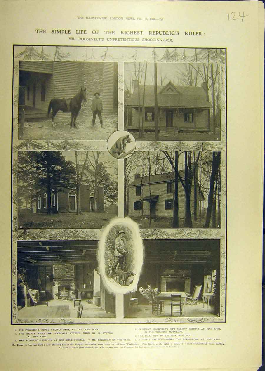 Print 1907 Roosevelt Shooting Box Horse President 248681 Old Original
