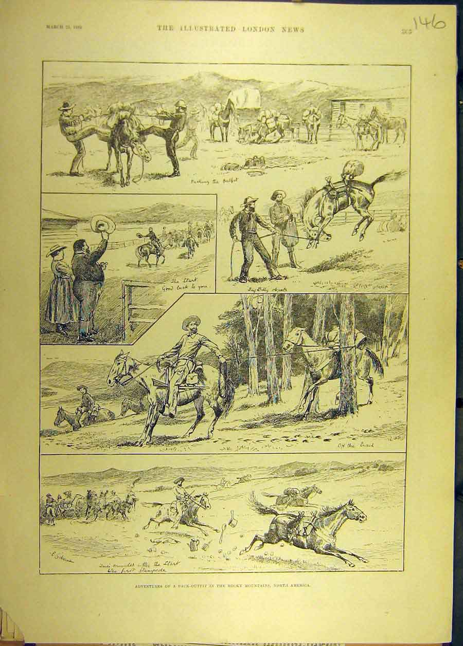 Print 1889 Pack-Outfit Rocky Mountains America Horse 468681 Old Original