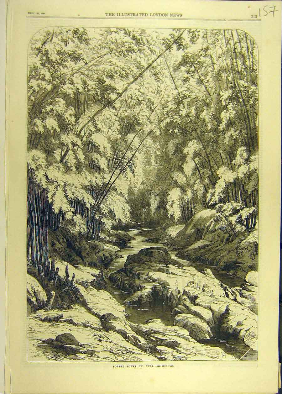 Print 1869 Forest Cuba Trees River Water Rocks 578681 Old Original