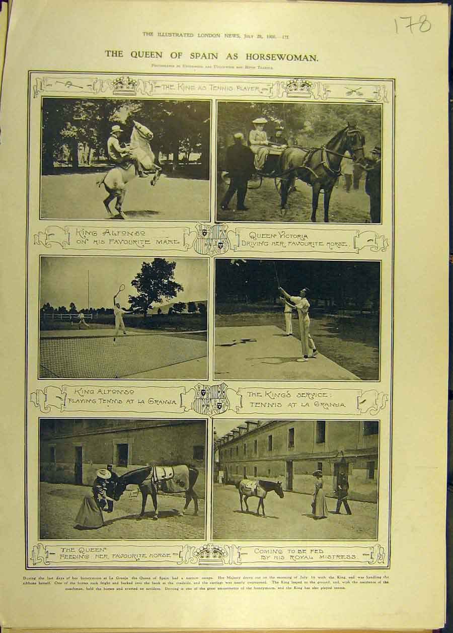[Print 1906 Queen Spain Horsewoman Rider Royal Alfonso 788681 Old Original]