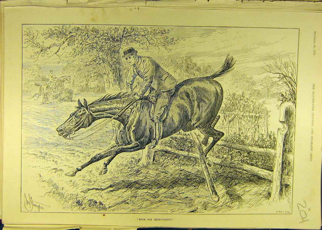Print 1891 Horse-Jump Fence Horses Rider Country Sturgess 018681 Old Original