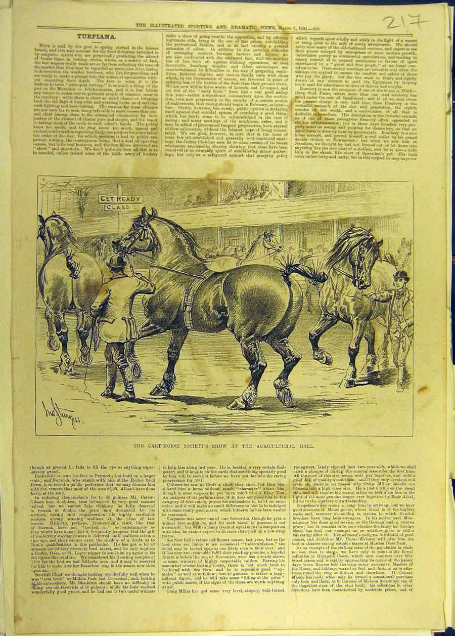 Print 1881 Cart-Horse Show Agricultural Hall Sketch Sturgess 178681 Old Original