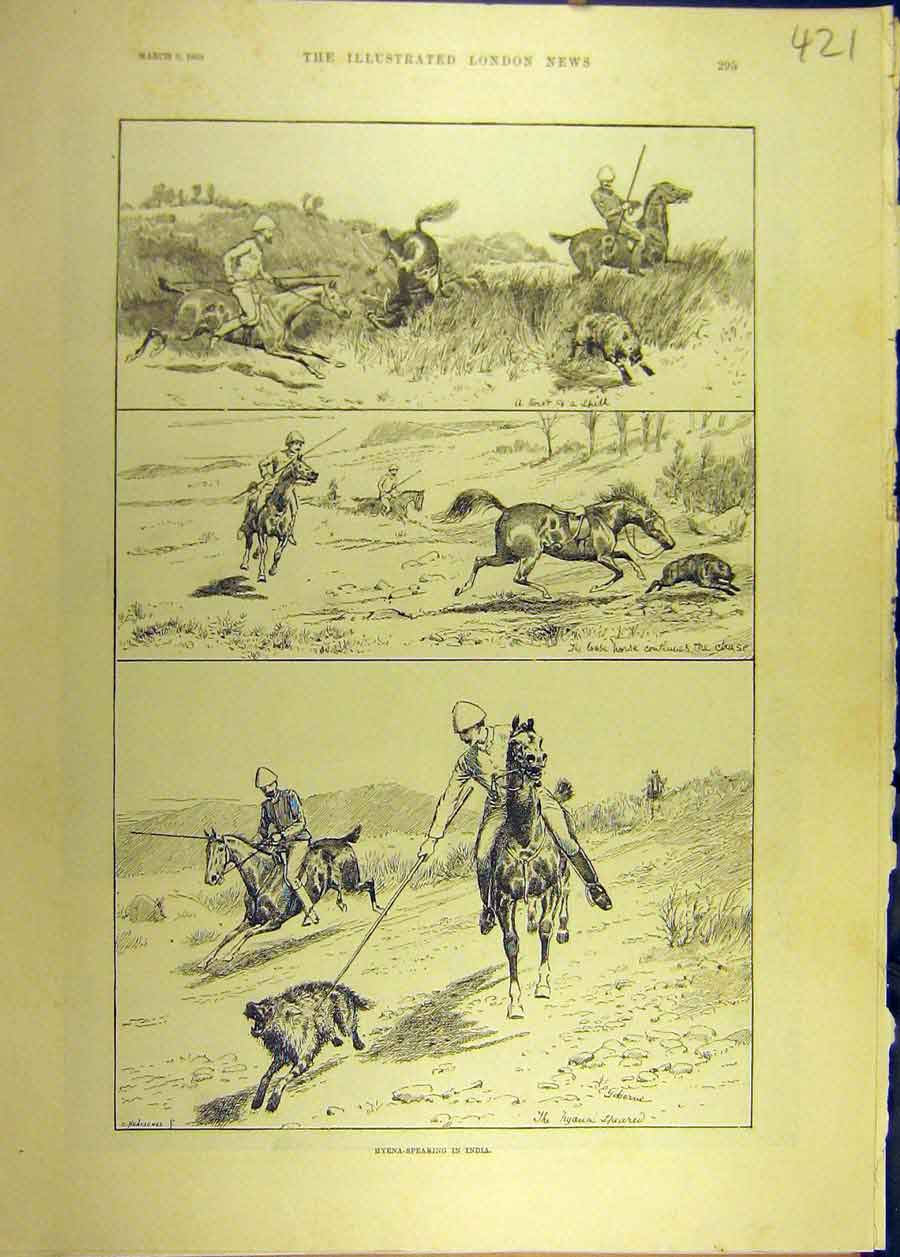 Print 1889 Hyena Spearing India Hunt Hunting Indian 218681 Old Original