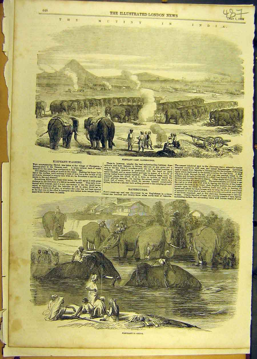 Print 1858 Mutiny India Elephant-Washing Camp Raneegunge 878681 Old Original
