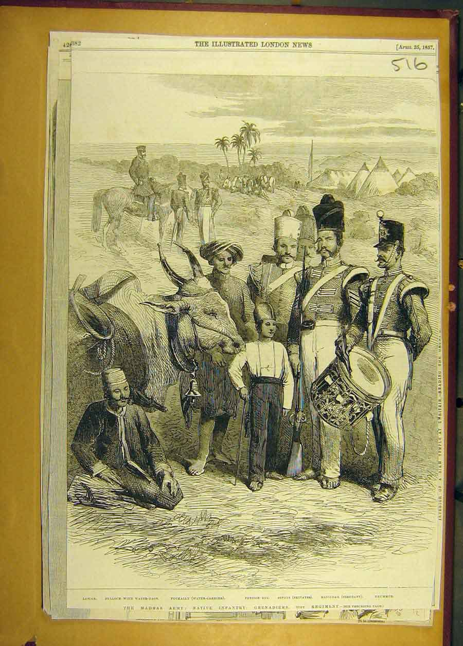 Print 1857 Madras Army Infantry Grenadiers Regiment Military 168681 Old Original
