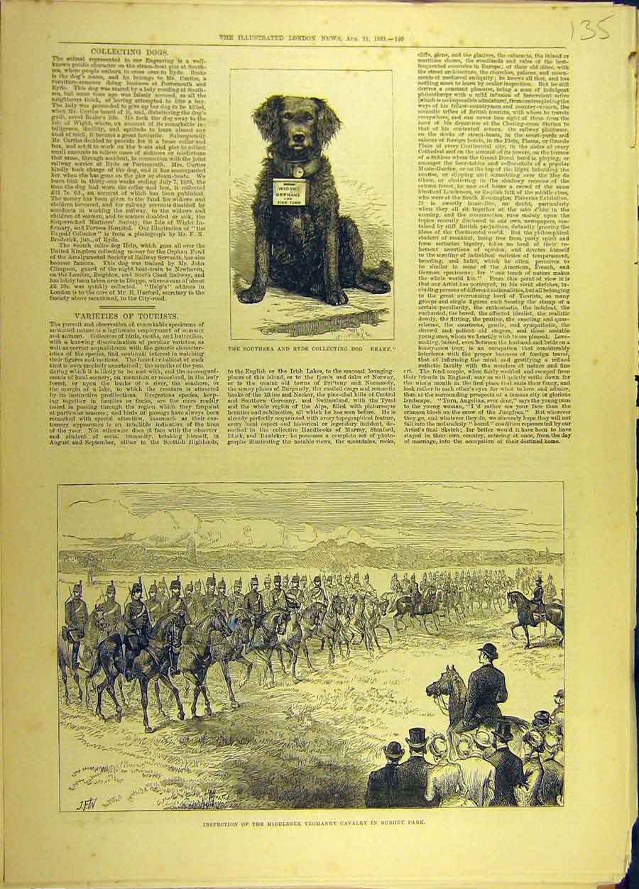 Print 1883 Southsea Ryde Collecting-Dog Yeomanry Cavalry 358691 Old Original