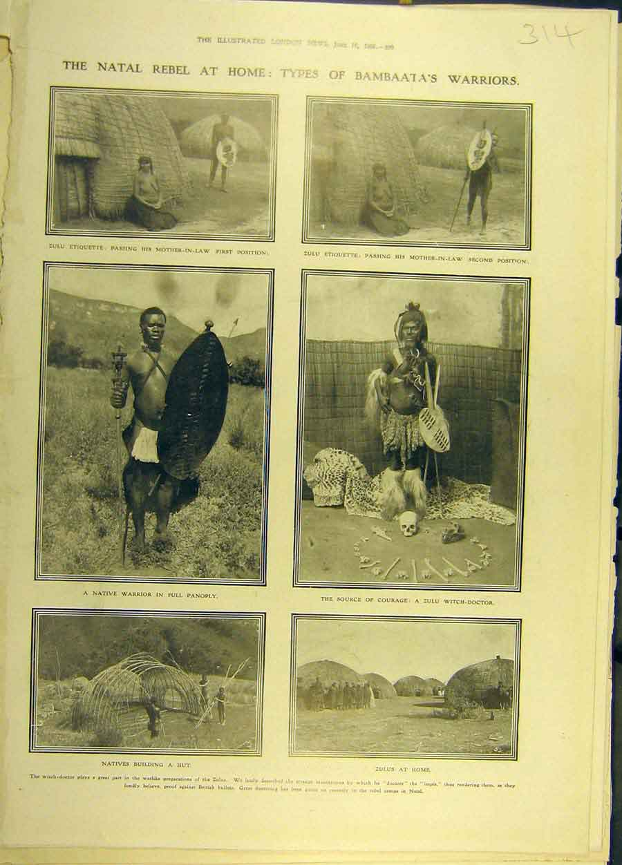 Print 1906 Natal Bambaata Warrior Zulu Witch-Doctor 148691 Old Original