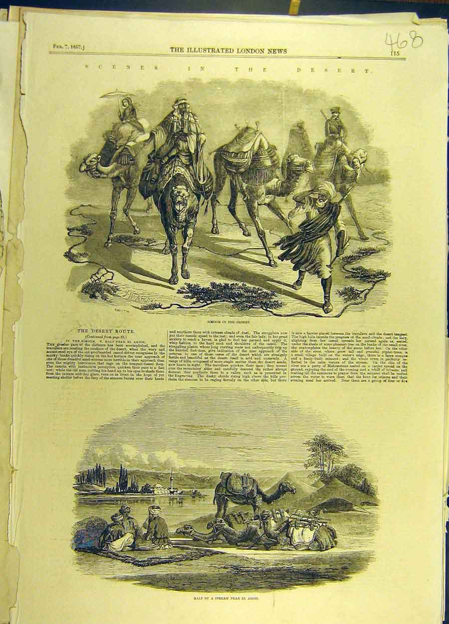 Print 1857 Desert Simoon Route Camels Stream El-Arish 688691 Old Original