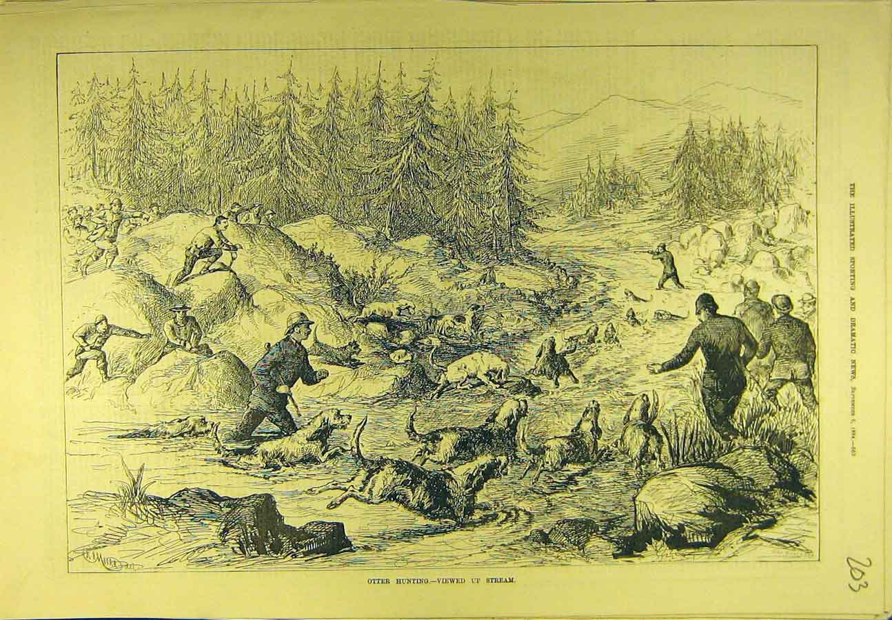 Print 1884 Otter-Hunting Hounds Shooting Hunt Stream 038721 Old Original