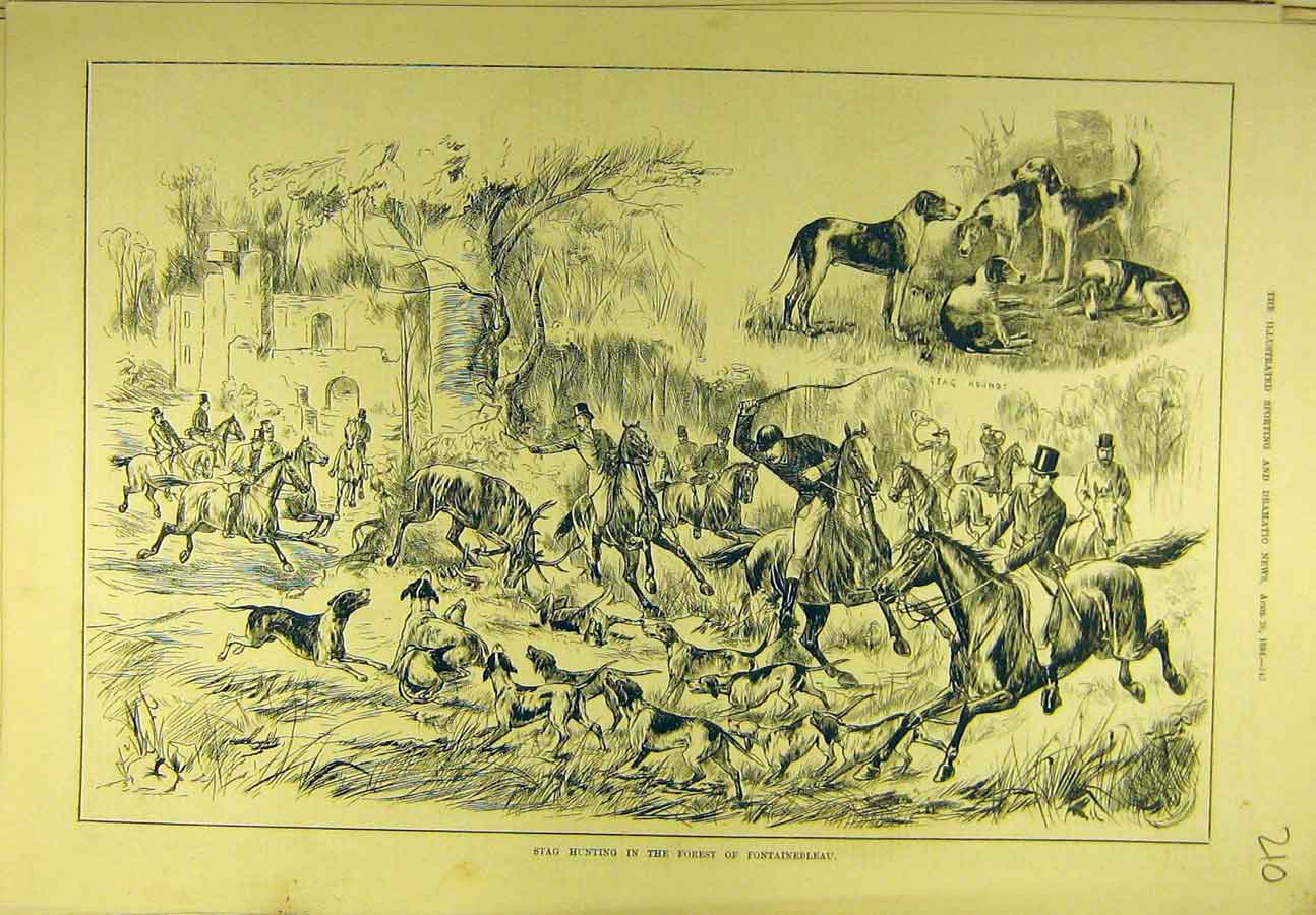Print 1884 Stag Hunting Forest Fontainebleau Sport 108721 Old Original