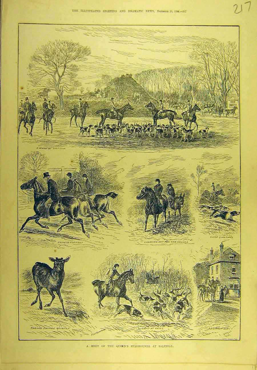 Print 1882 Queen'S Staghounds Salthill Hunting Sport 178721 Old Original