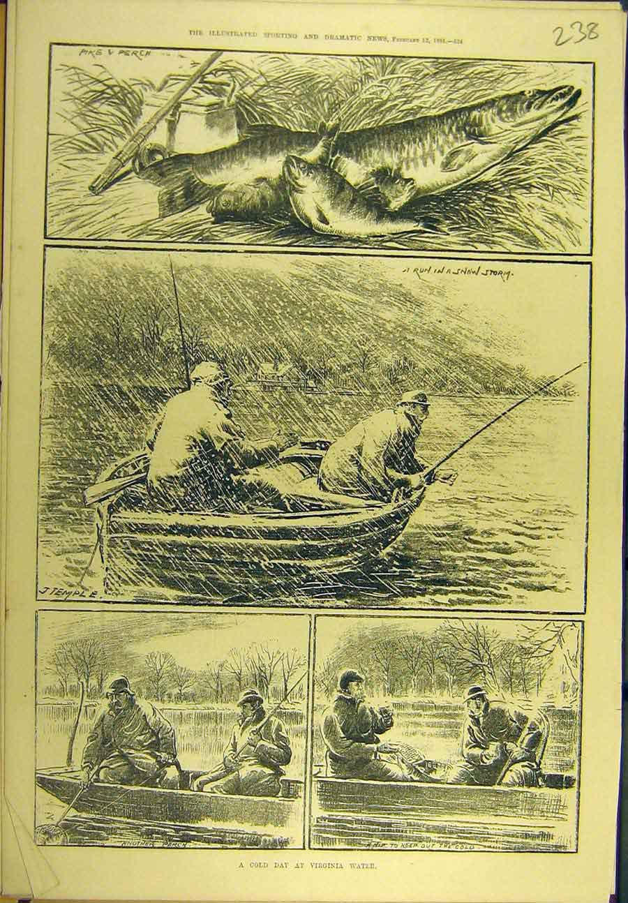 Print 1881 Cold-Day Virginia Water Fish Pike Perch 388721 Old Original