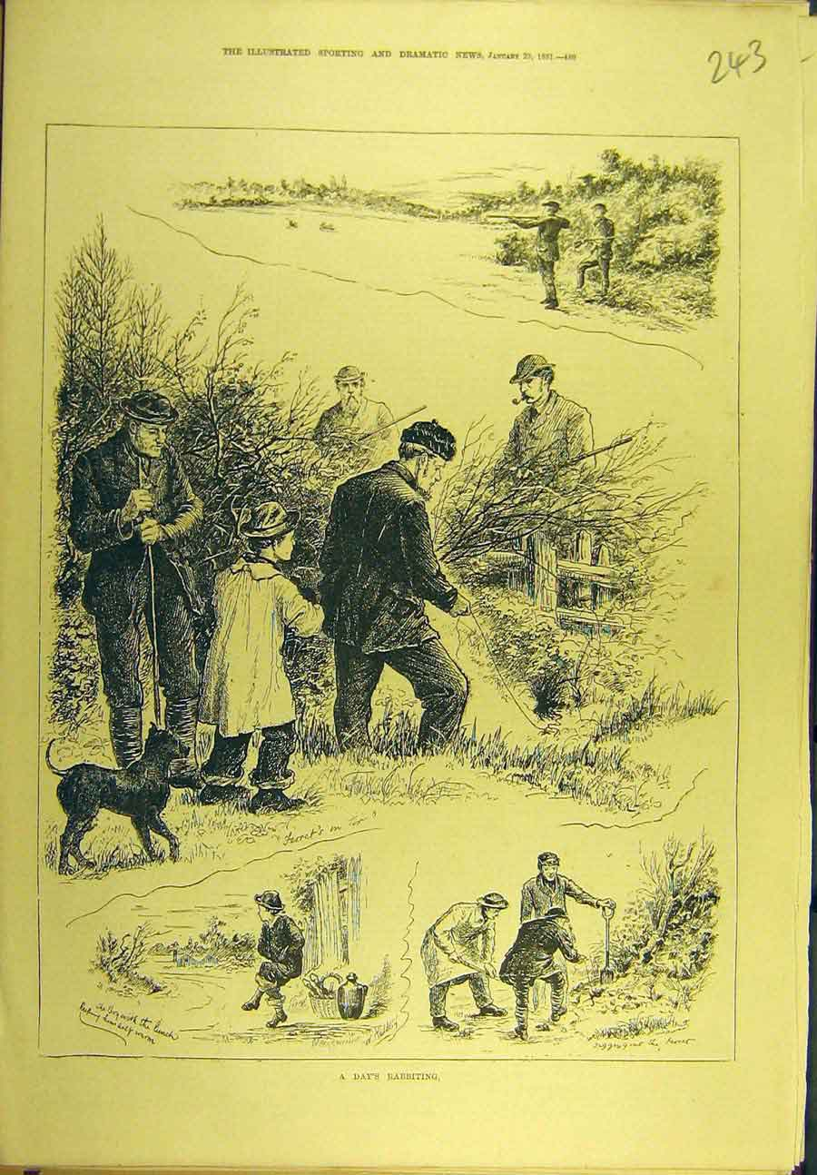Print 1881 Rabbit Hunt Shooting Sport 438721 Old Original