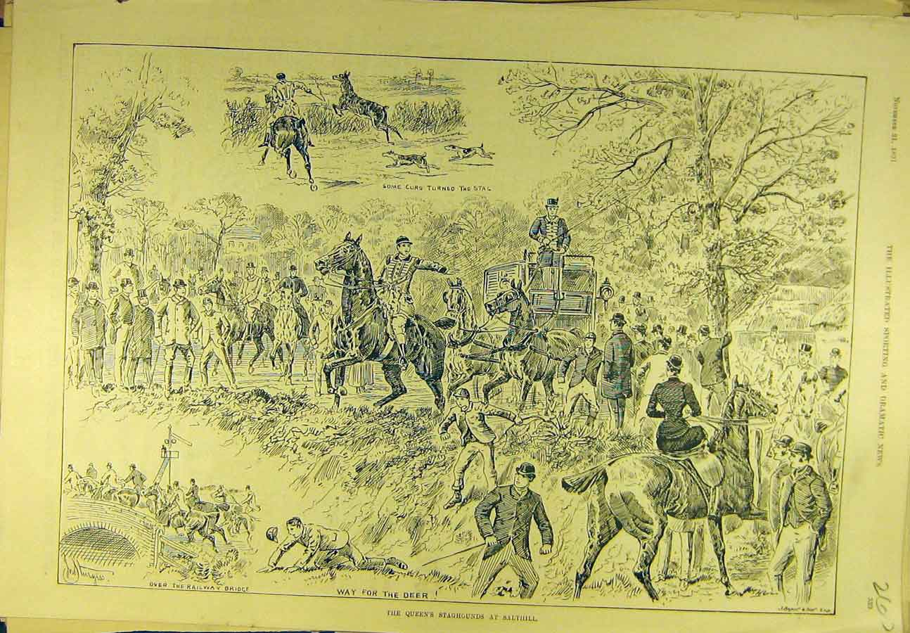 Print 1891 Queen'S Staghounds Salthill Hunting Sport 608721 Old Original