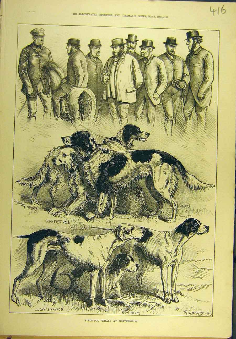 Print 1880 Field-Dog Trials Nottingham Pointers Dogs 168721 Old Original