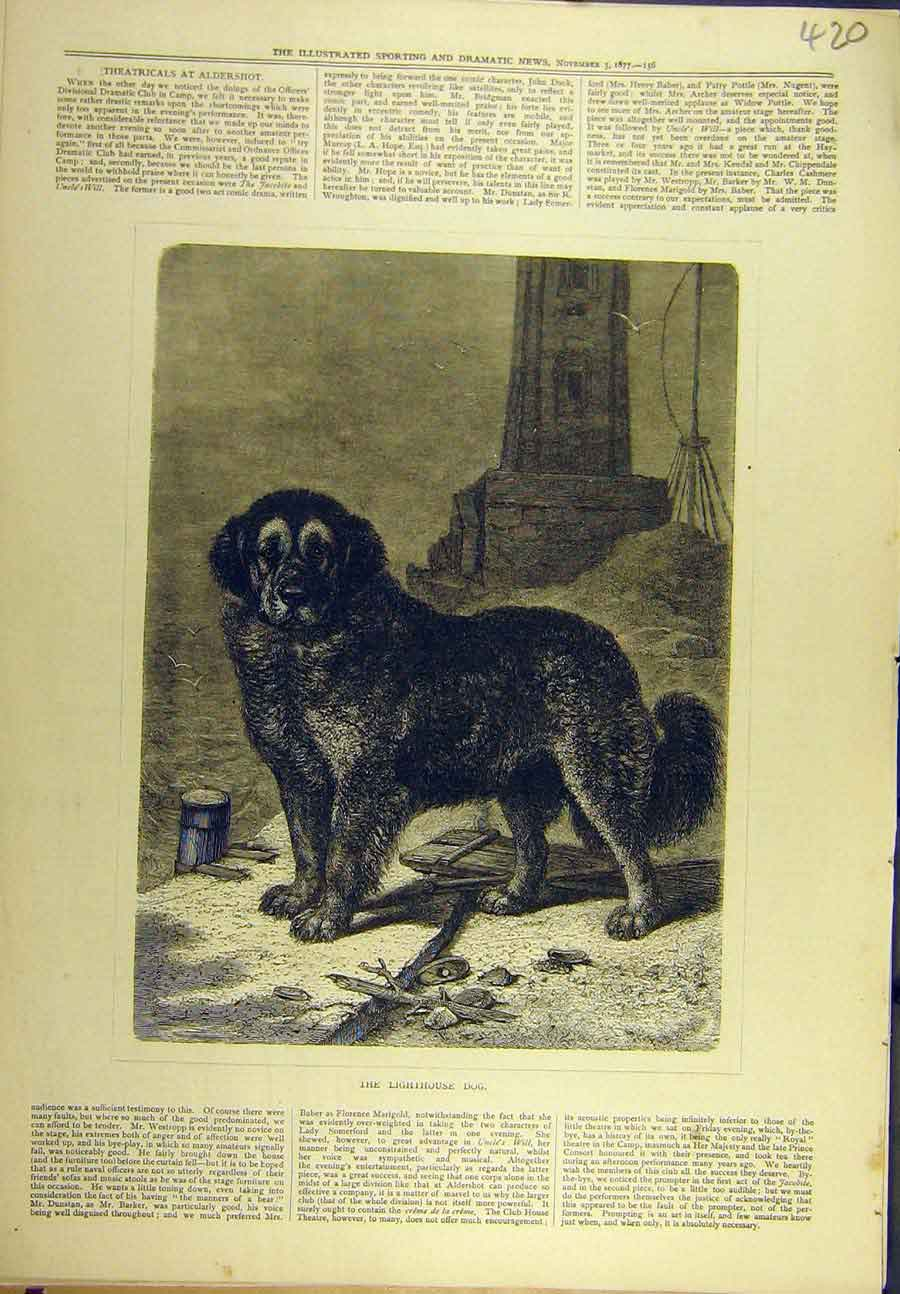 Print 1877 Lighthouse Dog St. Bernard 208721 Old Original