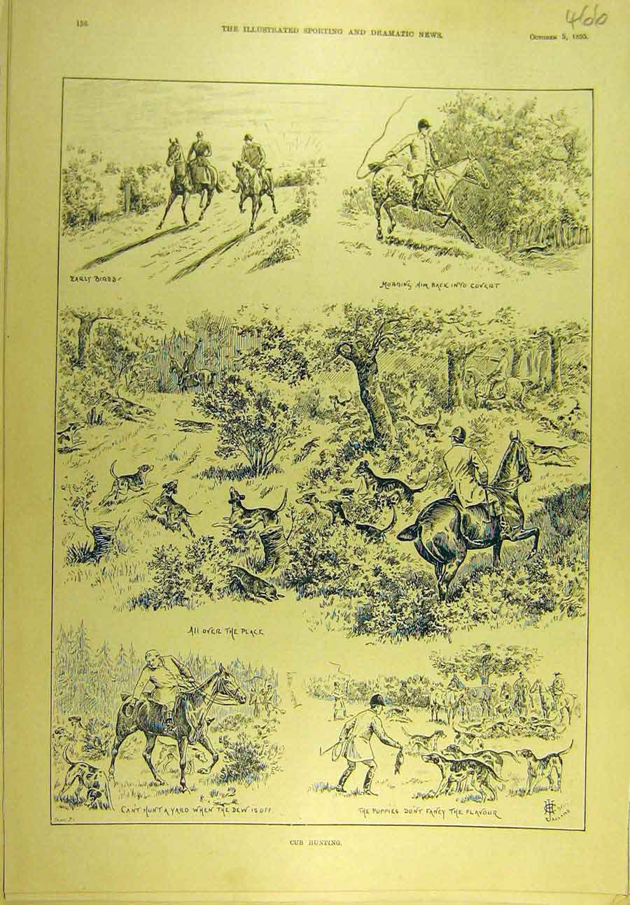 Print 1895 Hunting Cub Hounds Puppies Hunt Sport 668721 Old Original