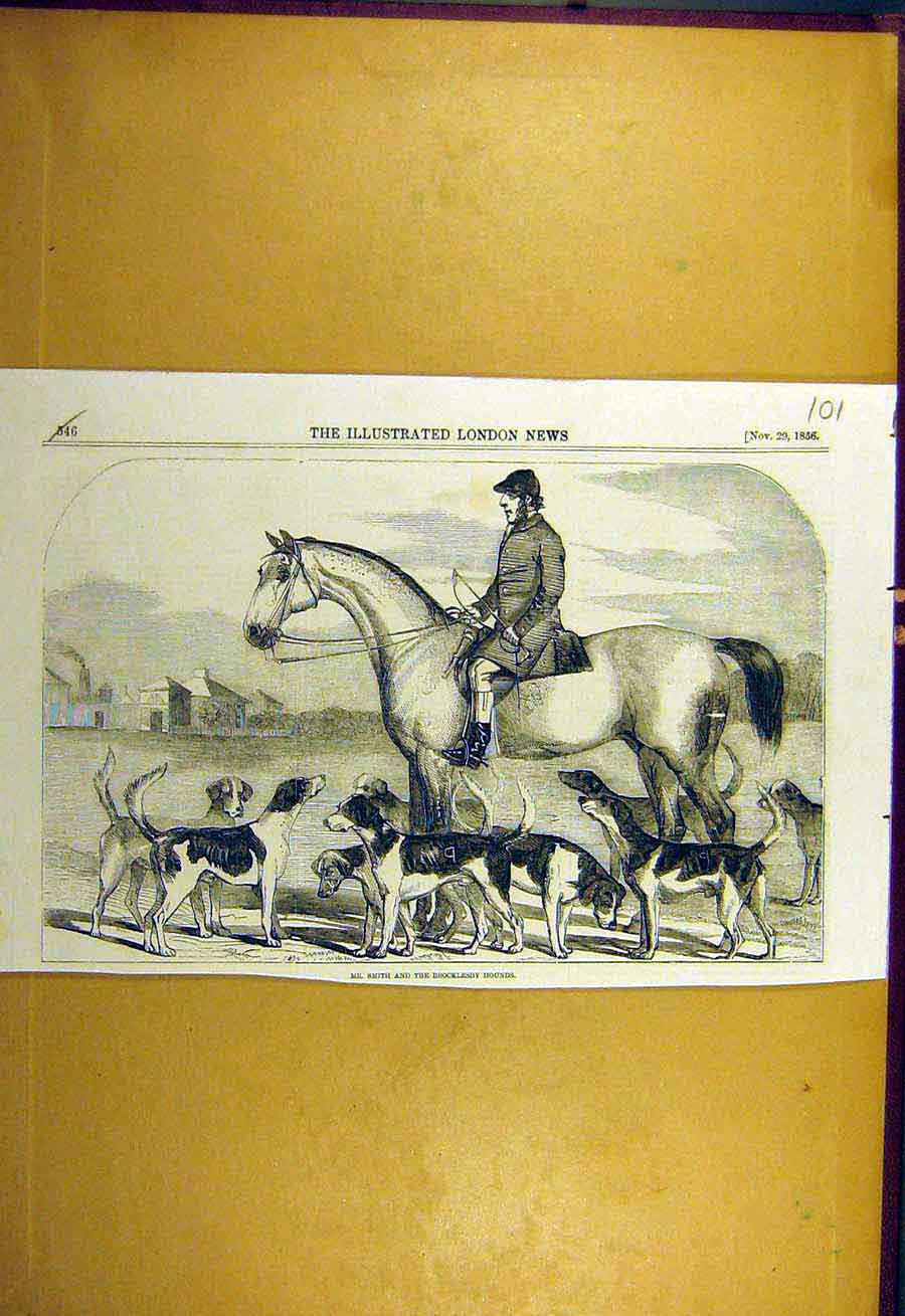 Print 1856 Smith Brocklesby Hounds Hunting Hunt 018731 Old Original