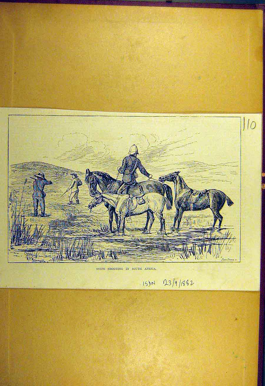 Print 1882 Snipe Shooting South-Africa Sport 108731 Old Original