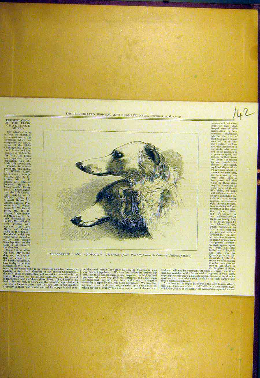 Print 1877 Melodeteze Moscow Royal Hounds Dogs Sporting 428731 Old Original