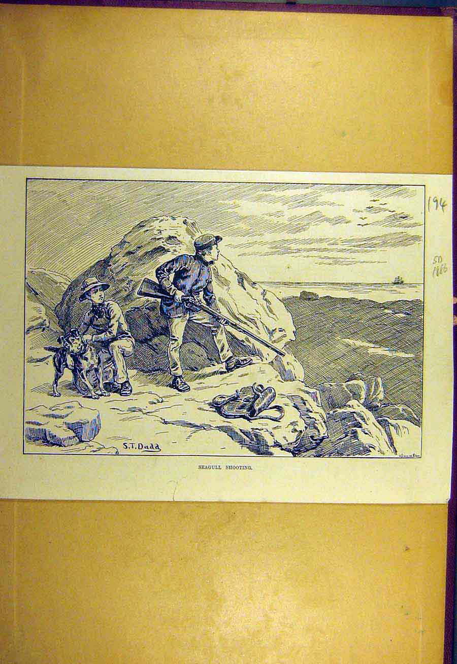 Print 1886 Seagull Shooting Dadd Sport Beach Boys 948731 Old Original