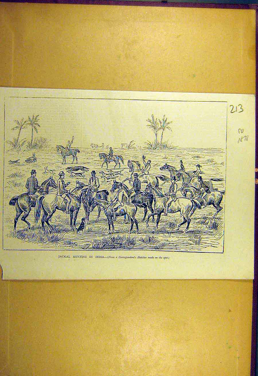 Print 1878 Jackal Hunting India Sketch Horses Hounds 138731 Old Original