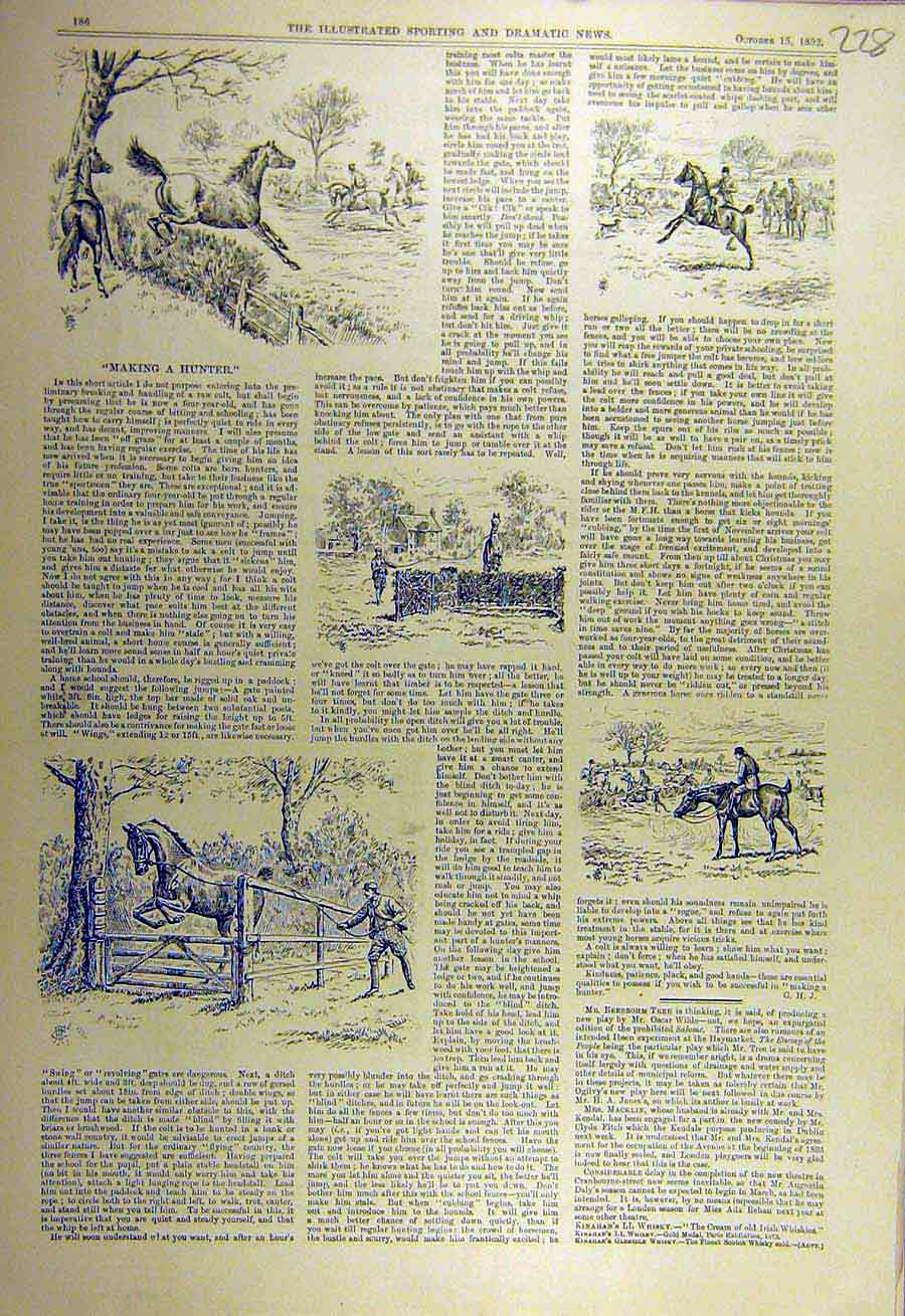Print 1892 Hunter Horse Sketches Hunting Training 288731 Old Original