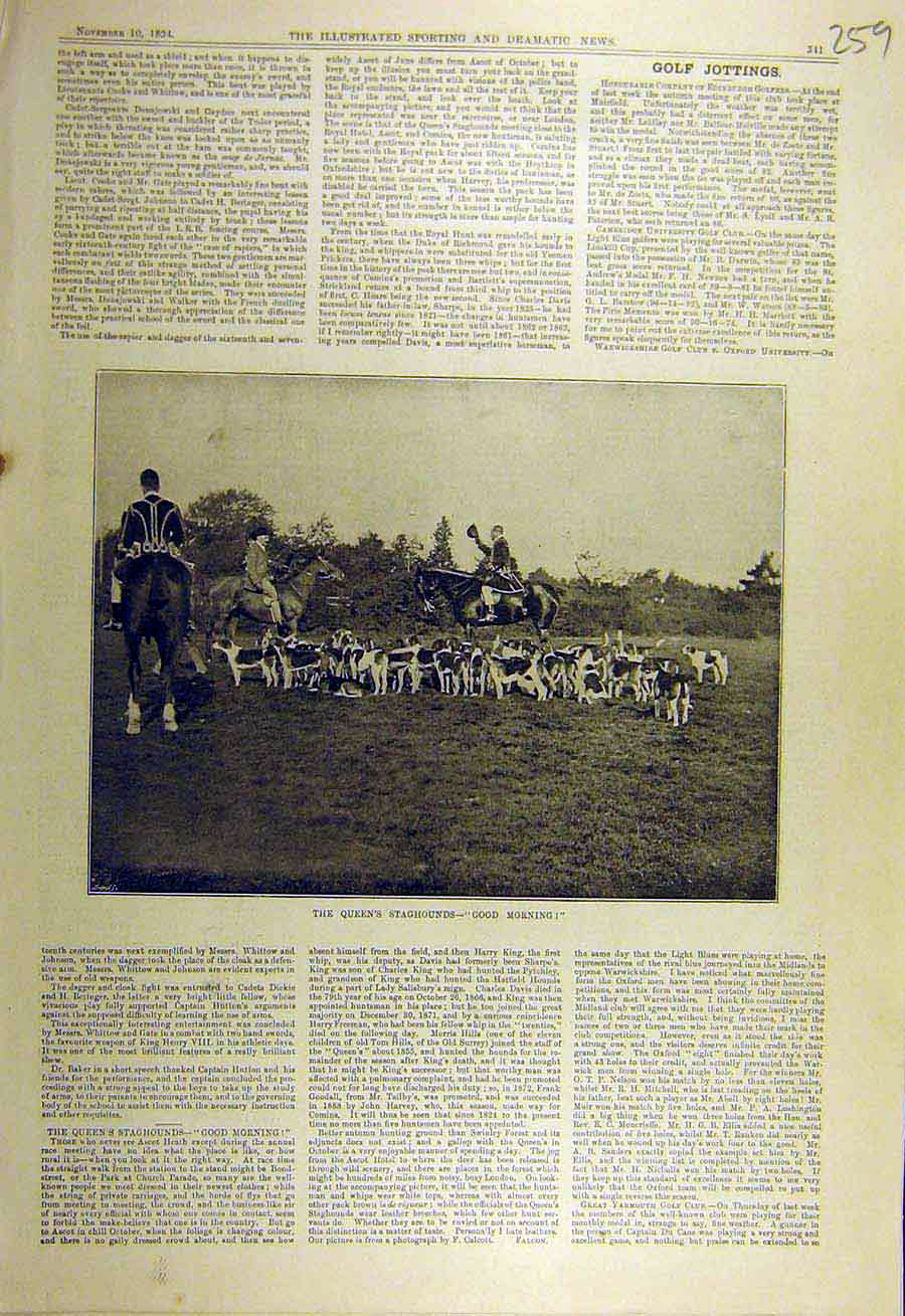 Print 1894 Queen'S Stag-Hounds Hunting Kennels Sport 598731 Old Original