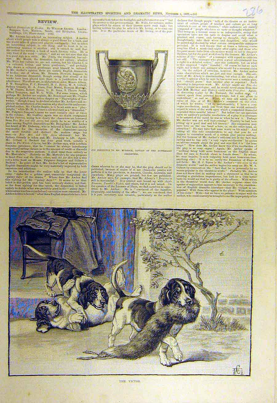 Print 1882 Victor Puppies Fox-Fur Hounds Cup Murdoch Cricket 868731 Old Original