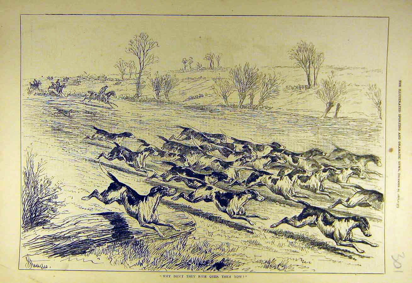 Print 1877 Hounds Hunt Hunting Field Gallop Hunters 018731 Old Original