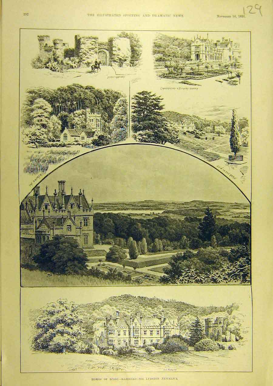 Print 1891 Sport Mamhead Lydson-Newman Sketches 298741 Old Original