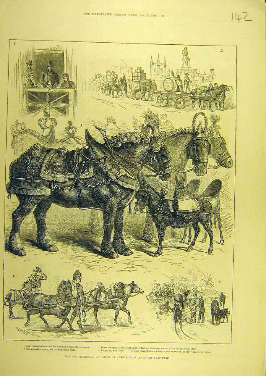 Print 1882 May-Day Procession Horses Newcastle-On-Tyne 428741 Old Original