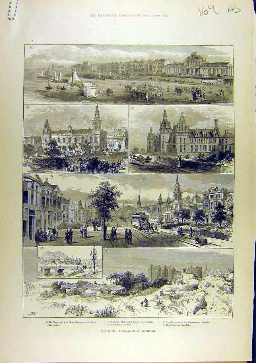 Print 1883 British Association Southport Professor Cayley 69A8761 Old Original