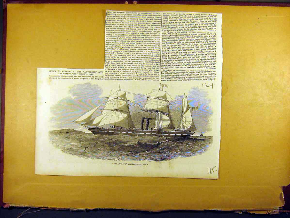 Print 1853 Antelope Australian Steam-Ship Sails 248771 Old Original