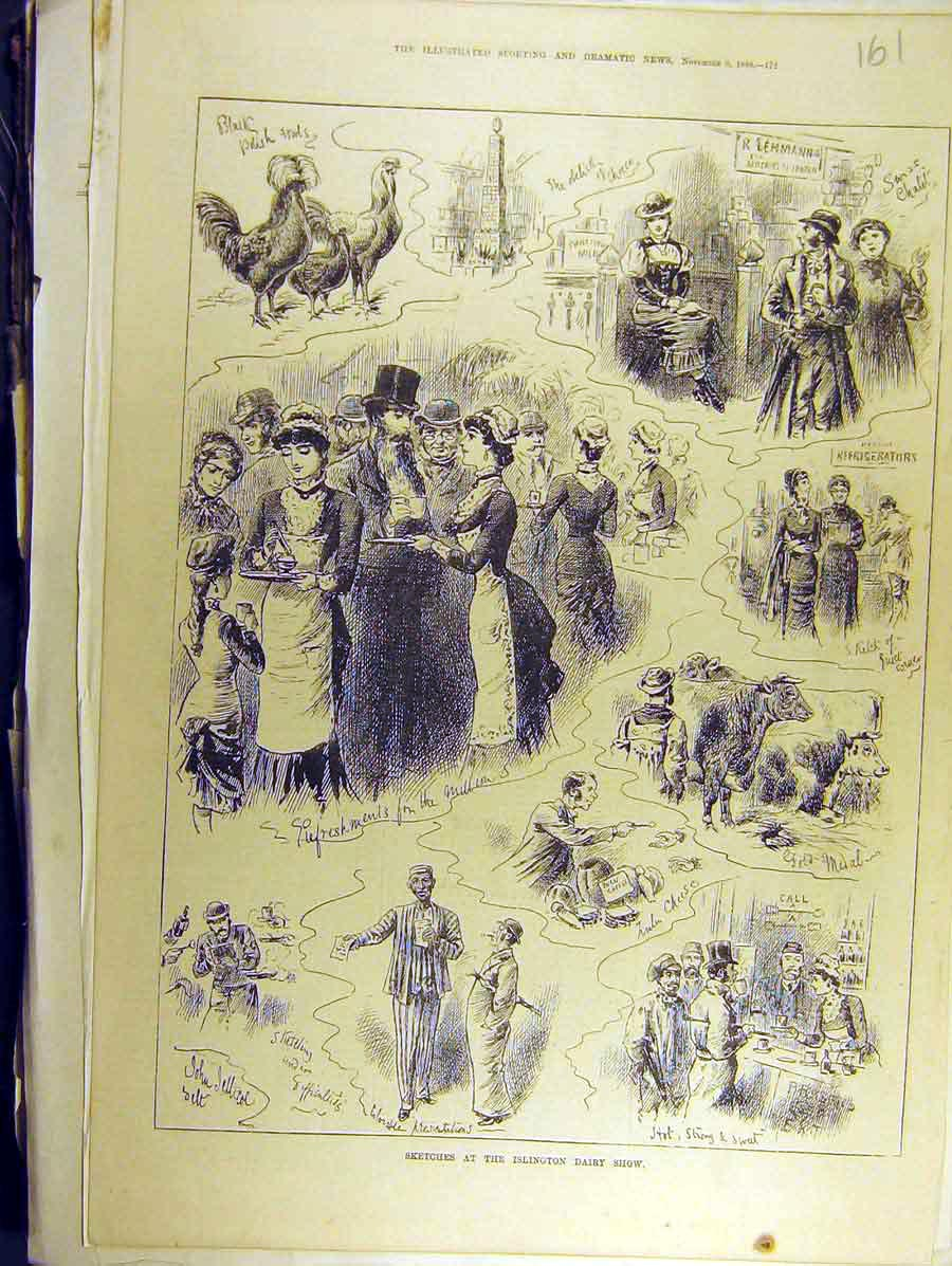 Print 1880 Sketches Islington Dairy Show Cattle Poultry 618771 Old Original