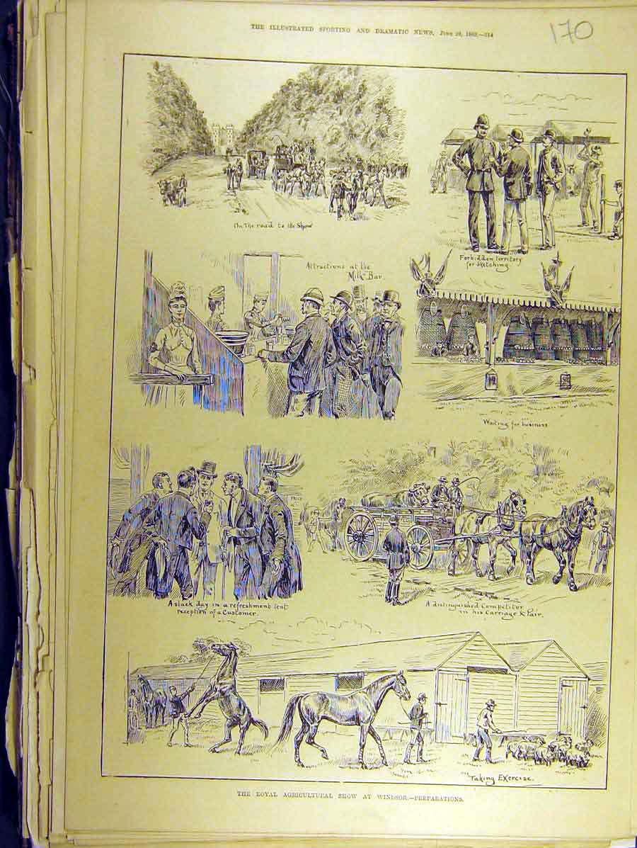 Print 1889 Royal Agricultural Show Windsor Horse Cattle 708771 Old Original