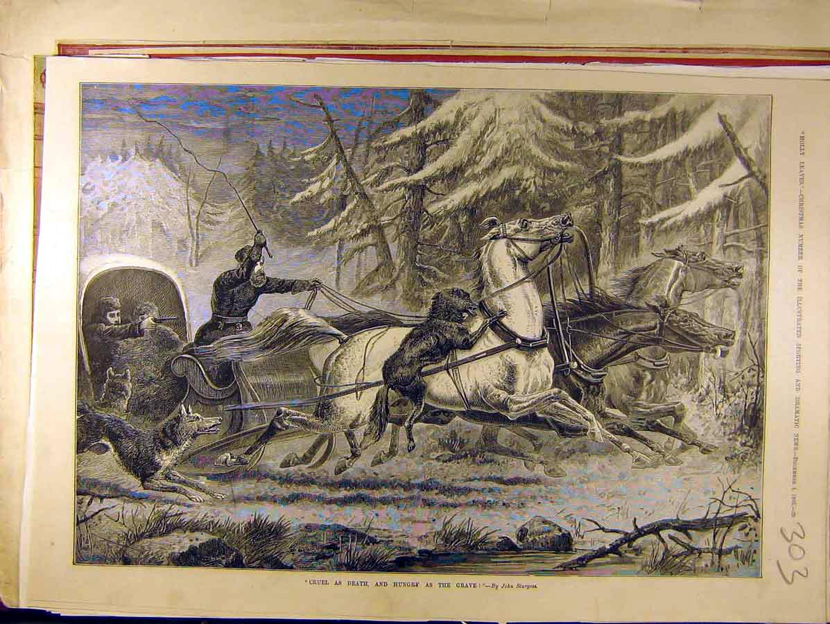 Print 1886 Wolves Horse Carriage Sturgess Wolf Attack 038771 Old Original